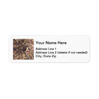 Gorrión de árbol americano etiqueta de remite
