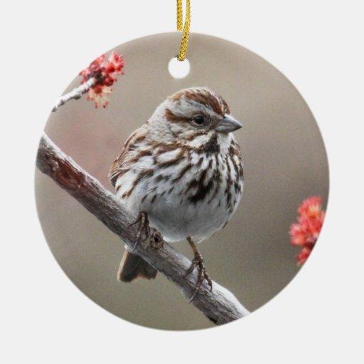Gorrión de canción adorno navideño redondo de cerámica