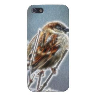 Gorrión de Fractalius iPhone 5 Carcasa