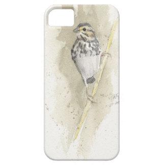 Gorrión de la sabana en primavera temprana iPhone 5 Case-Mate protector