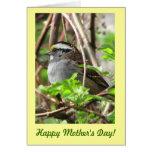 Gorrión dulce para el día de madre tarjeta de felicitación