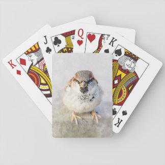Gorrión - el guerrero baraja de cartas