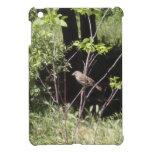 Gorrión en las maderas iPad mini protectores