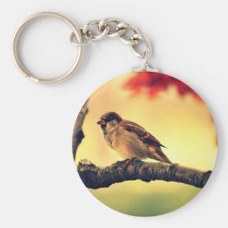 Gorrión en un árbol llavero redondo tipo pin