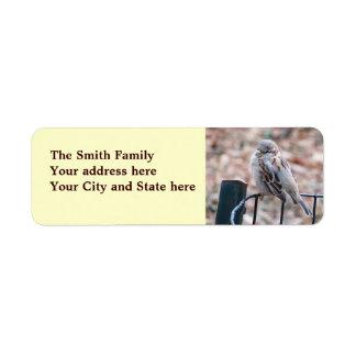 Gorrión en una cerca de alambre etiqueta de remite