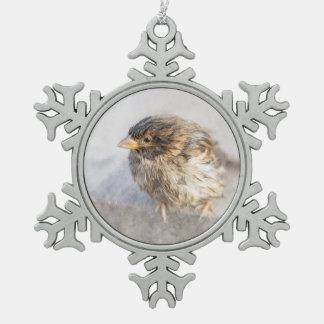 Gorrión - fall épico de la previsión metereológica adorno de peltre en forma de copo de nieve