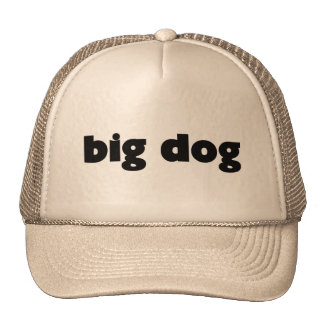 "Gorro ""big dog """
