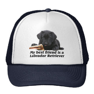 "Gorro ""Labrador retriever """