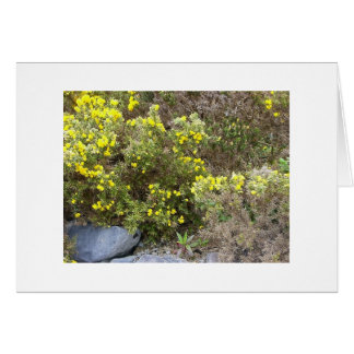 Gorse and Rocks Card