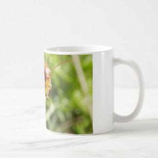 Gorse Bug Macro Coffee Mug