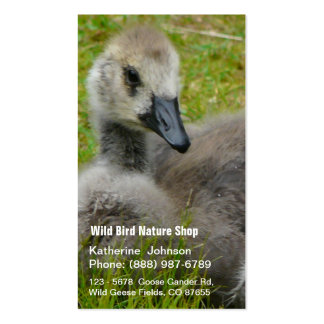 Gosling Baby Goose Photograph Business Card Template