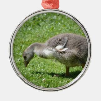 Gosling gris adorno navideño redondo de metal