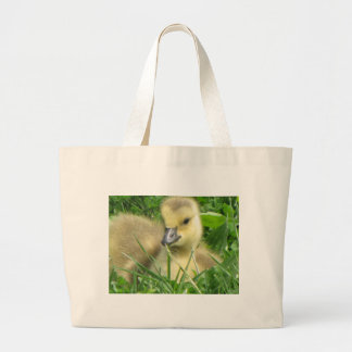 Gosling laying down bags