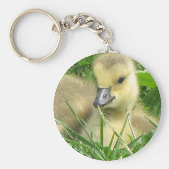 Gosling laying down keychain