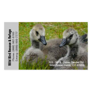 Goslings Baby Geese Refuge or Rescue Business Card