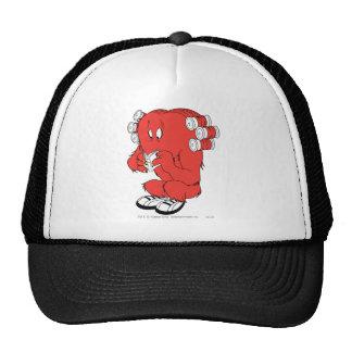 Gossamer Reading - Full Color Mesh Hat