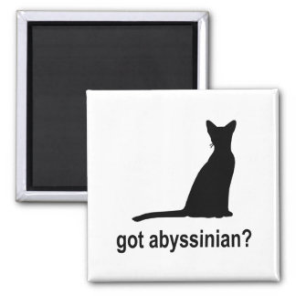 Got Abyssinian? Magnets