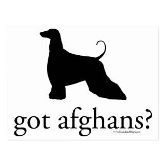 got afghans? postcard