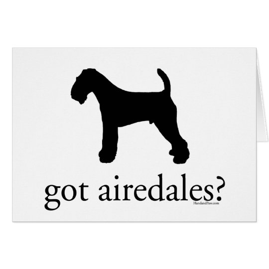 got airedales? card
