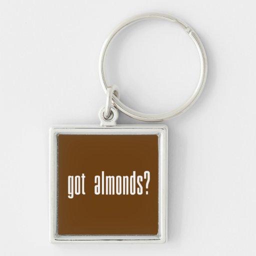 Got Almonds? Key Chains