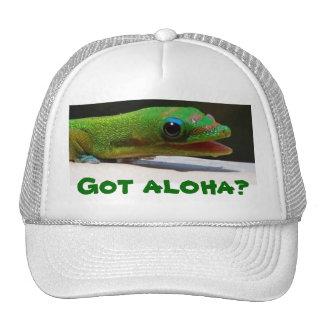 Got aloha? gecko trucker hat
