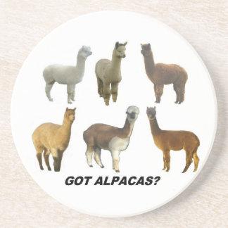 Got alpacas? beverage coasters