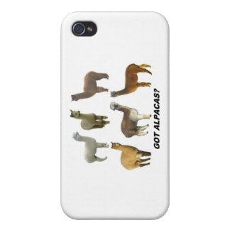 Got alpacas? iPhone 4 covers