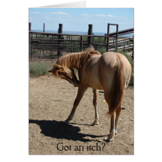 Got an itch? greeting cards