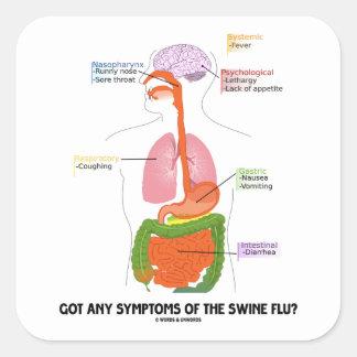 Got Any Symptoms Of The Swine Flu? (Anatomy) Stickers
