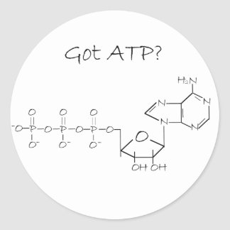 Got ATP? Classic Round Sticker