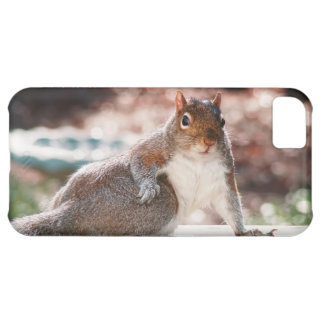 Got Attitude? Squirrel iPhone Case