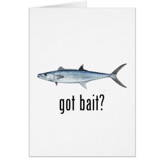 Got Bait? - King Mackeral Card