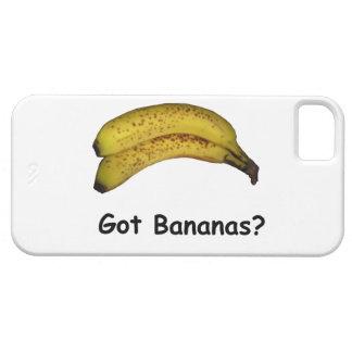 Got Bananas iPhone SE/5/5s Case