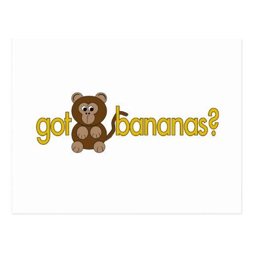 Got bananas? postcard
