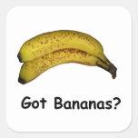 Got Bananas Square Stickers