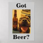 Got Beer? Posters