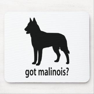 Got Belgian Malinois Mouse Pads