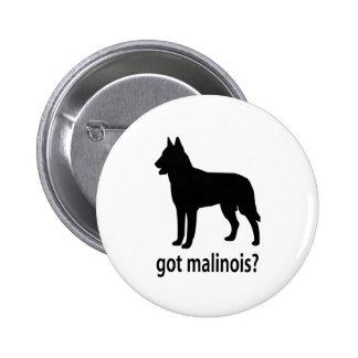 Got Belgian Malinois Pinback Button