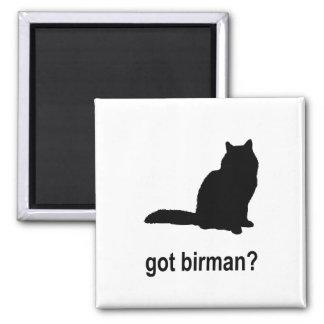 Got Birman? 2 Inch Square Magnet