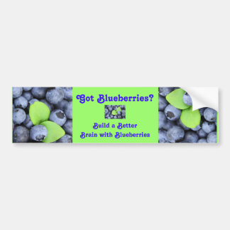 Got Blueberries? Bumper Sticker