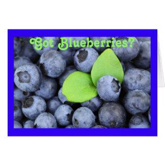 Got Blueberries? Card
