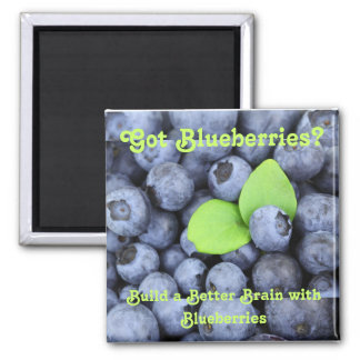 Got Blueberries? Magnet