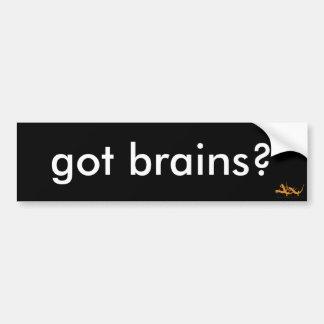 Got Brains? Bumper Sticker Car Bumper Sticker