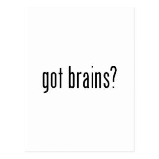 got brains? postcard