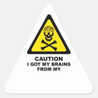 got brains triangle sticker