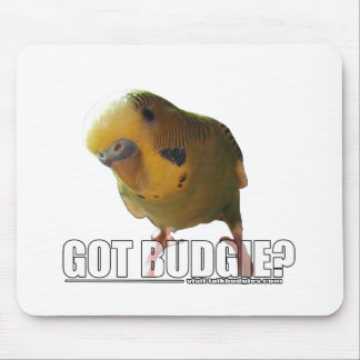 Got budgie? mouse pad