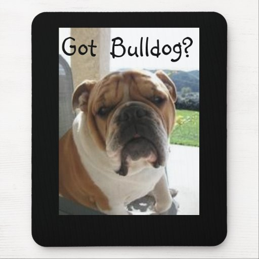 Got Bulldog? Mouse Pad
