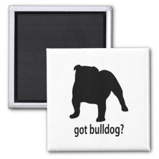 Got Bulldog Refrigerator Magnet