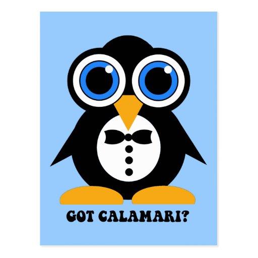 got calamari post cards