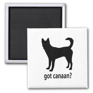 Got Canaan Dog 2 Inch Square Magnet